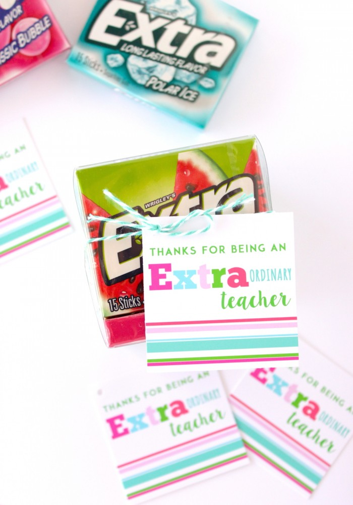 picture regarding Extra Gum Teacher Appreciation Printable referred to as Trainer Appreciation Present