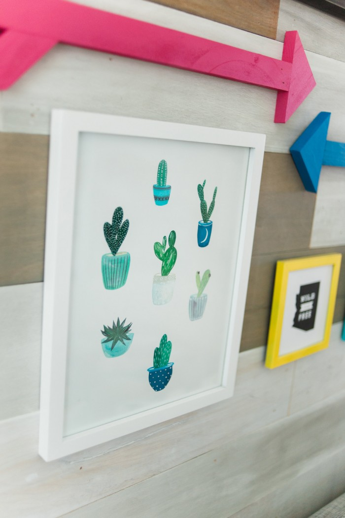 cacti print land of nod